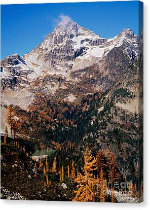 Black Peak Above Maple Pass Canvas Print by Tracy Knauer