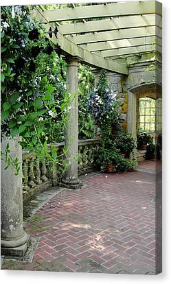 Canvas Print featuring the photograph Black Petunias by Natalie Ortiz