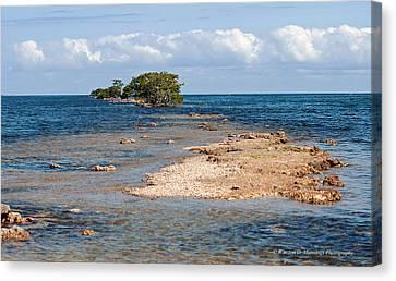Black Point Marina - Cutler Bay Canvas Print
