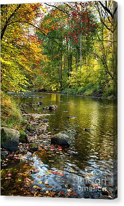 Black River Fall Scenic In New Jersey Canvas Print by George Oze