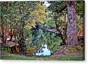 Canvas Print featuring the photograph Black River Reflections by Linda Brown