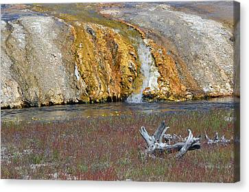 Black Sand Basin Runoff Yellowstone Canvas Print by Bruce Gourley