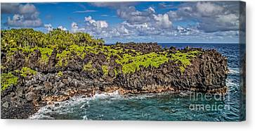 Parc Canvas Print - Black Sand Beach Maui Hawaii by Edward Fielding