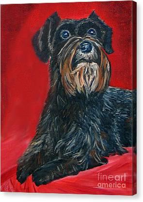 Black Schnauzer Pet Portrait Prints Canvas Print