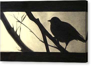 Black Side Beauty Canvas Print by Atinderpal Singh