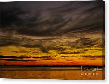 Black Sunset Canvas Print by Tannis  Baldwin