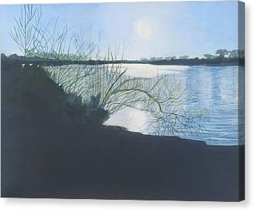 Black Swan Lake Canvas Print