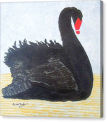 Black Swan Lake Canvas Print by Richard W Linford