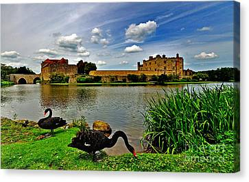 Black Swans At Leeds Castle II Canvas Print