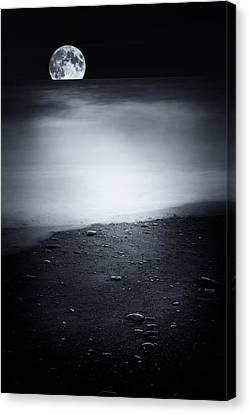 Black Sweet Canvas Print by Philippe Sainte-Laudy