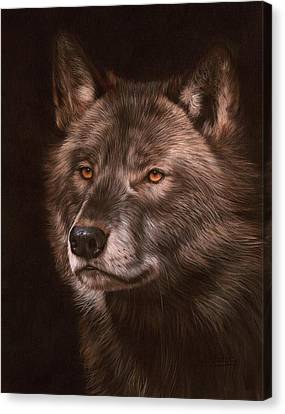 Black Wolf Canvas Print by David Stribbling