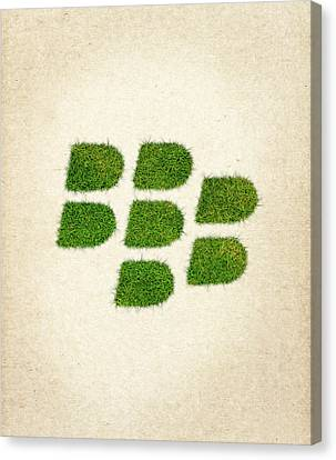 Blackberry Grass Logo Canvas Print by Aged Pixel