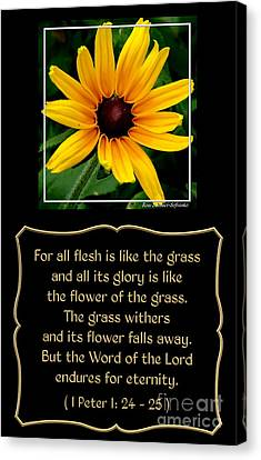 Blackeyed Susan With Bible Quote From 1 Peter Canvas Print by Rose Santuci-Sofranko