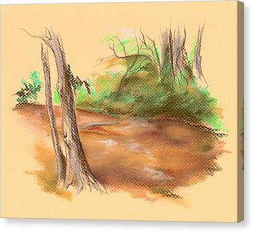 Blackwater Creek Canvas Print by MM Anderson