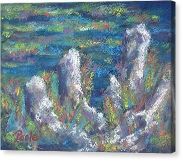 Blackwater Cypress Knees Canvas Print