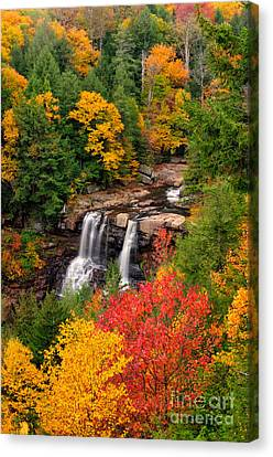 Blackwater Falls D300_19675 Canvas Print by Kevin Funk