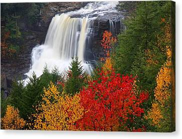 West Canvas Print - Blackwater Falls In Autumn by Jetson Nguyen