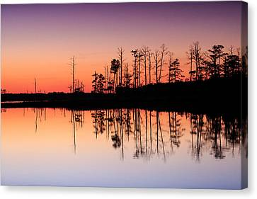 Canvas Print featuring the photograph Blackwater Reflections by Jennifer Casey