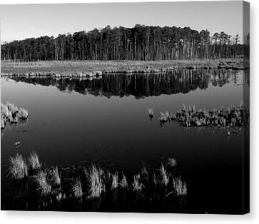 Blackwater  Canvas Print by Robert Geary