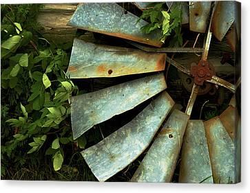 Blades Canvas Print by Chuck De La Rosa