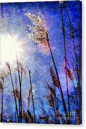 Blades Of Glory Marsh Grass Canvas Print by Janine Riley