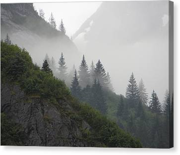 Blanket Of Fog Canvas Print by Jennifer Wheatley Wolf