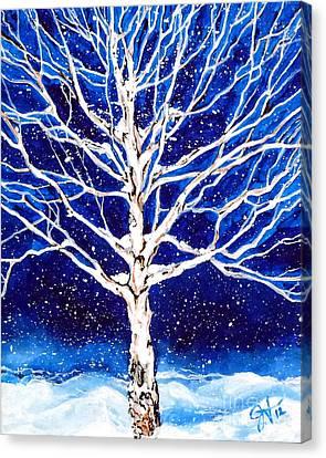 Blanket Of Stillness Canvas Print by Jackie Carpenter