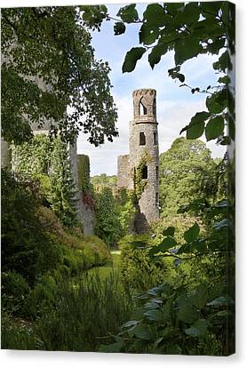 Mike Canvas Print - Blarney Castle 2 by Mike McGlothlen