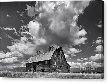 Blasdel Barn - Black And White Canvas Print by Mark Kiver