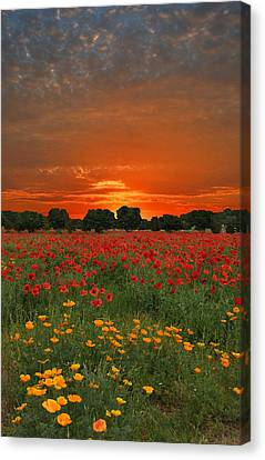 Blaze Of Glory Canvas Print