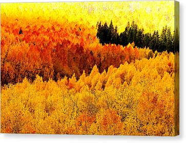 Blazing Mountainside Canvas Print by The Forests Edge Photography - Diane Sandoval