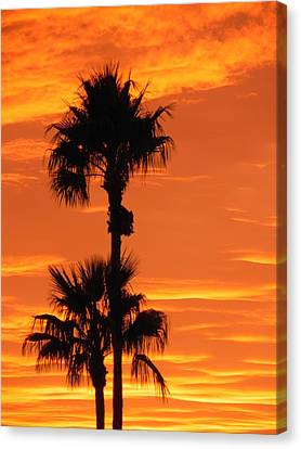 Canvas Print featuring the photograph Blazing Sunset by Deb Halloran