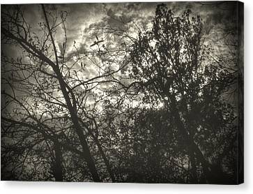 Melancholy Canvas Print - Bleak by Taylan Apukovska