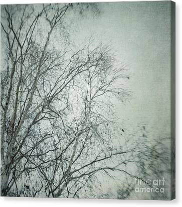 bleakly I Canvas Print by Priska Wettstein