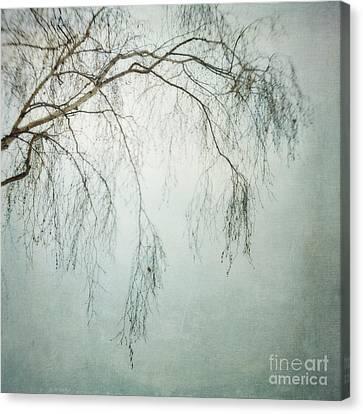 bleakly III Canvas Print by Priska Wettstein