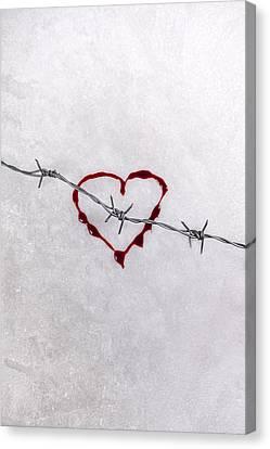 Pointy Canvas Print - Bleeding Love by Joana Kruse