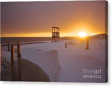 Blinded By The Sun Canvas Print
