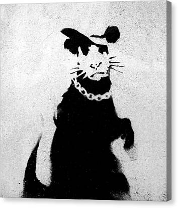 Bling Rat  Canvas Print by A Rey
