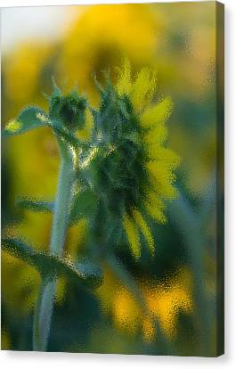 Bliss For Me Canvas Print by Rima Biswas