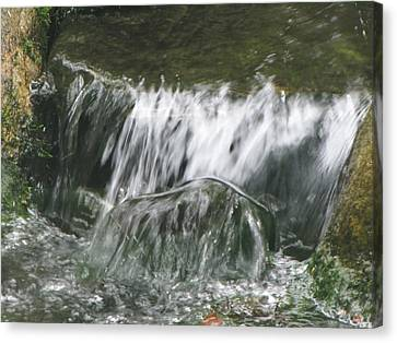 Blissful Falls Canvas Print by Harry Wojahn