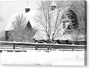 Blizzard Follows Ice Storm Canvas Print by Regina  Williams