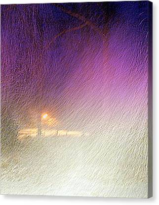 Blizzard Canvas Print by Pamela Hyde Wilson