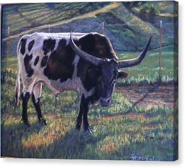 Blk And White Longhorn Steer Canvas Print