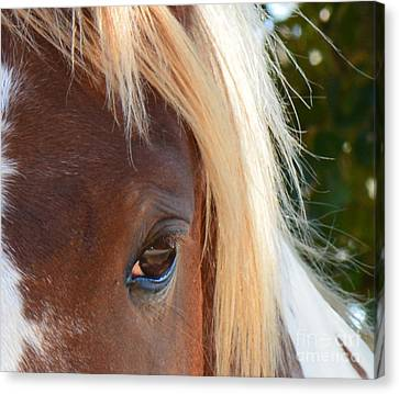 Blondes Do Have More Fun Canvas Print