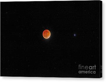 Canvas Print featuring the photograph Blood Moon And Stars by Martin Konopacki