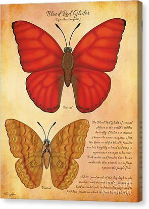 Blood Red Glider Butterfly Canvas Print by Tammy Yee