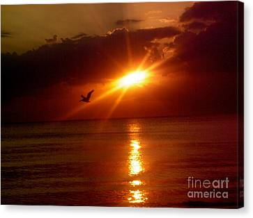 Blood Red Sunset Canvas Print by Carla Carson
