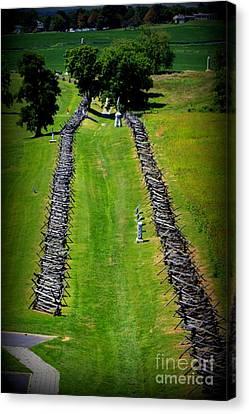 Bloody Lane Antietam Canvas Print by Patti Whitten