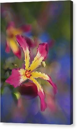 Bloomin Hong Kong Orchid Canvas Print