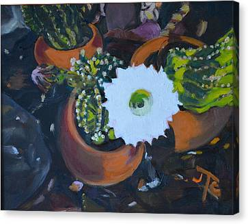 Blooming Cacti Canvas Print by Julie Todd-Cundiff